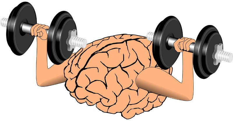 Exercise at the Right Time May Improve Memory